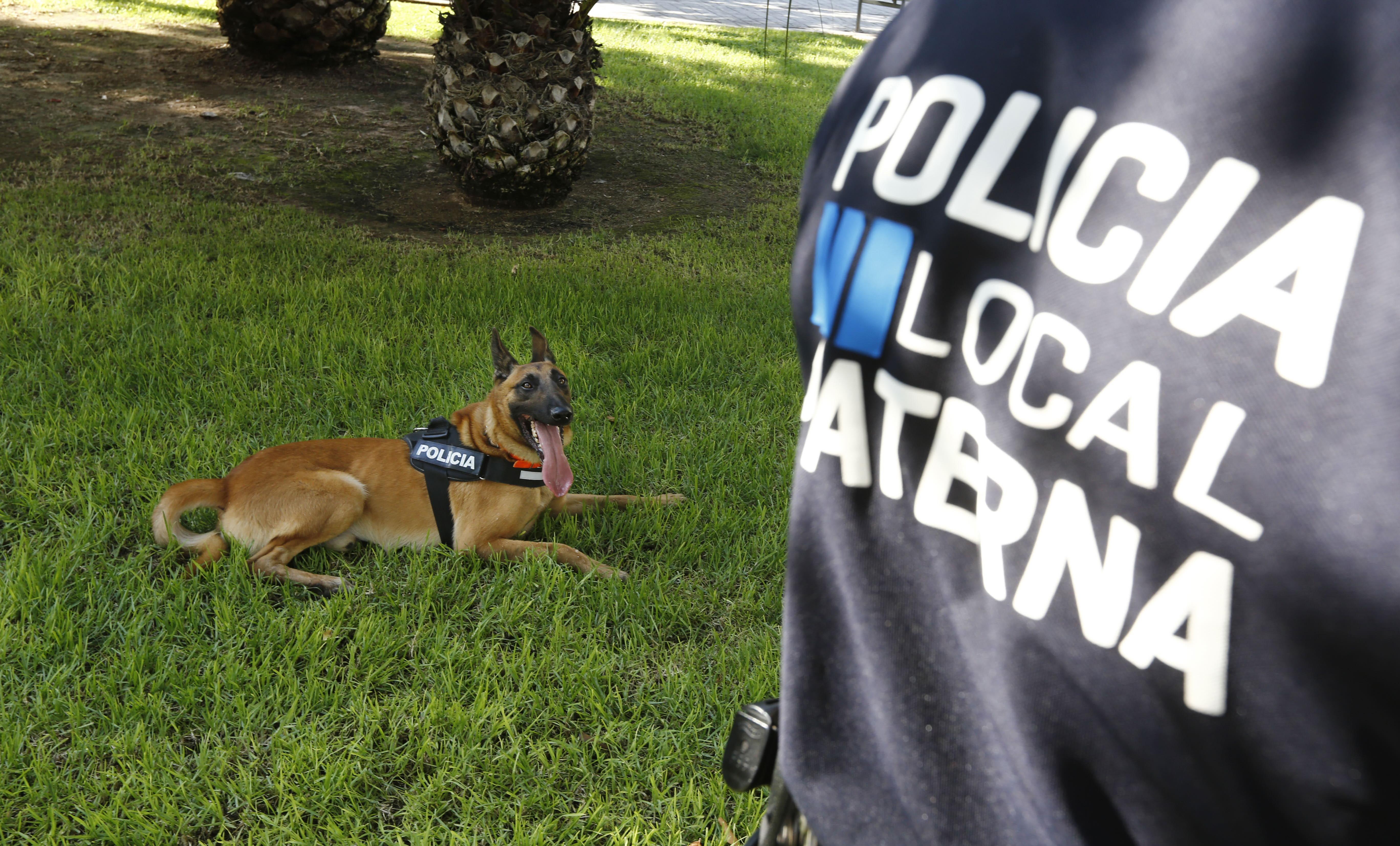 El policía con más olfato | Almas con patas - Blogs lasprovincias.es
